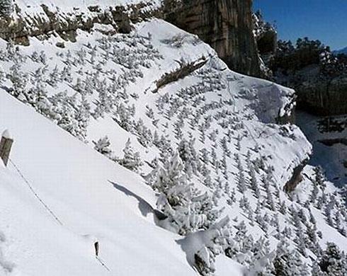 Sleeping snow hill