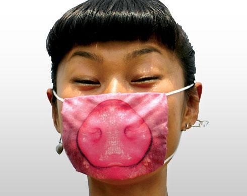 Swine flu: pig