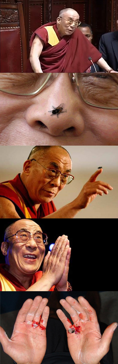 Dalai Lama's Fly Technique